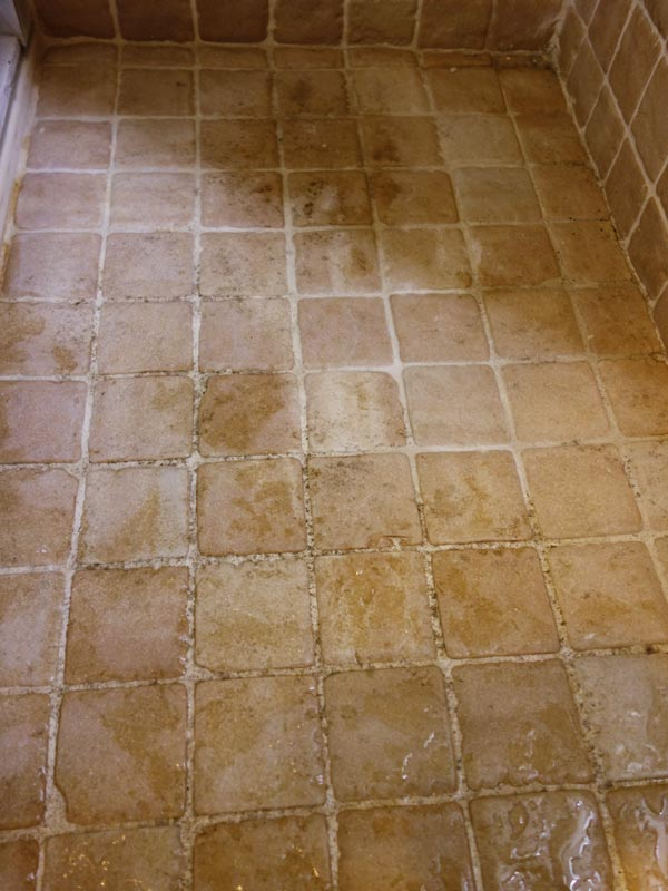 Best way to remove black mold from tile and grout curious nut for How to clean bathroom grout mold