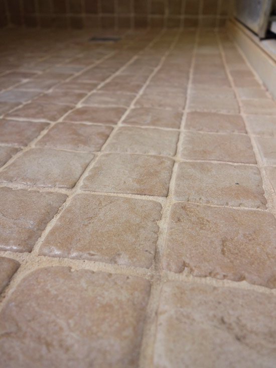 Bathroom Grout best cleaner for pink mold on bathroom grout | curious nut