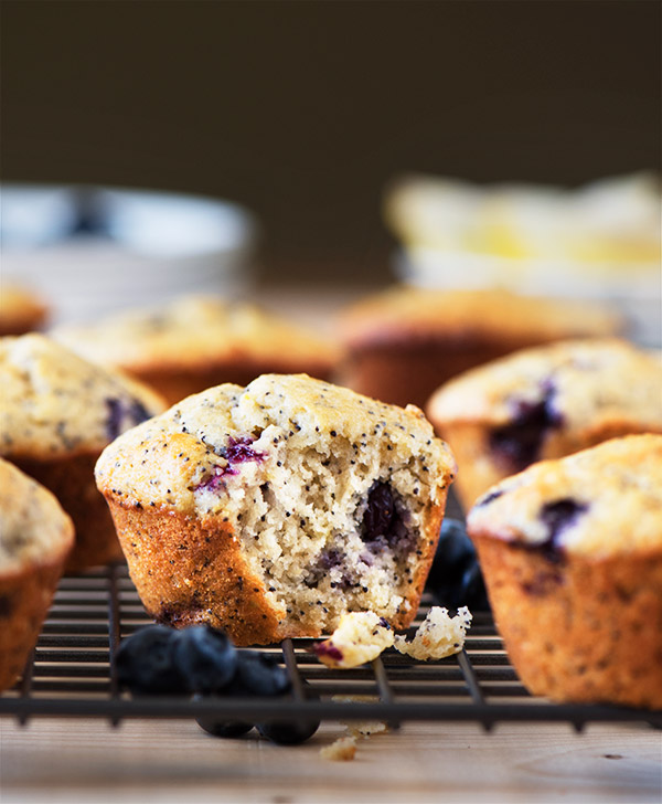 Blueberry Lemon Poppy Seed Muffin | Curious Nut