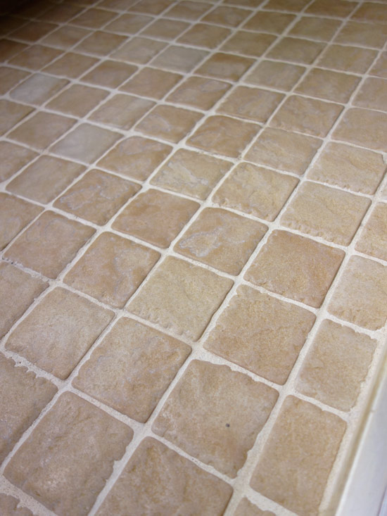 Remove Pink Mold On Bathroom Tile Or Grout